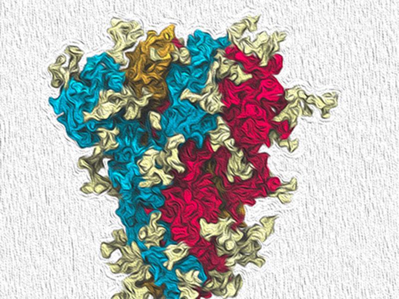 Supercomputers Map the Coronavirus